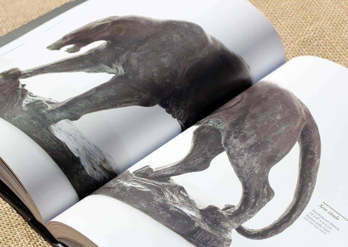 João Turin – Vida, obra, arte – Livro